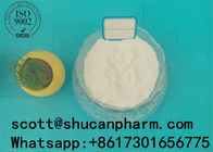 China Cancer Treatment Steroids White Powder Arimidex Anastrozole CAS 120511-73-1 company
