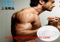Muscle Building Steroids 99% Powder Testosterone decanoate / test deca for Muscle Building
