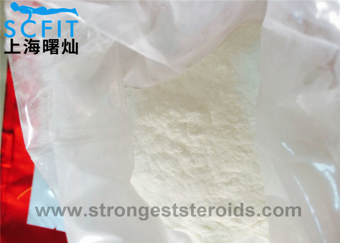 Local Anesthetic Powder 99% Procaine HCl / Procaine CAS: 51-05-8 numbing drug for bodybuilding