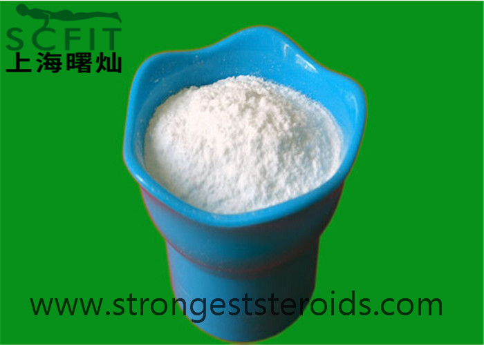 Methenolone Enanthate 303-42-4 Primobolan Enanthate White Steroid For Beginner