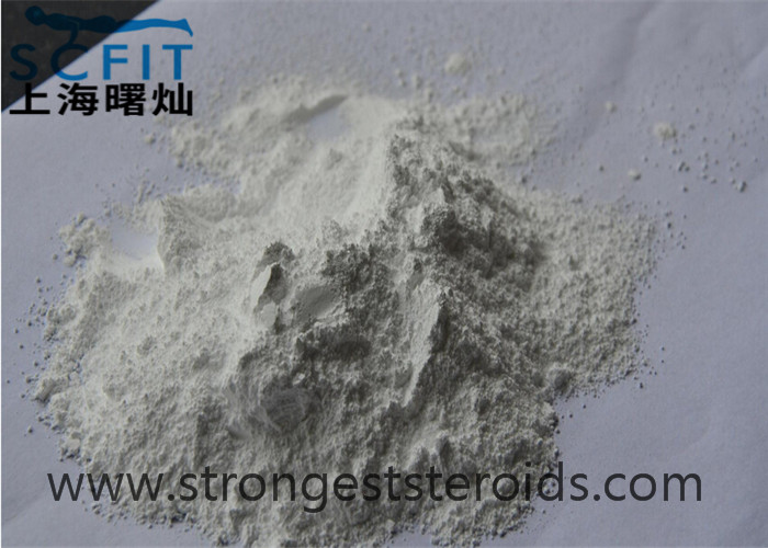 White Female Hormone Powder Estradiol Cypionate 313-06-4 Effective For Cutting Cycle