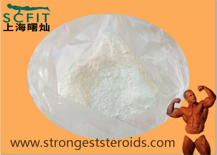 White Muscle Building Steroids Stanolone 521-18-6 For Healthy Bodybuilding Supplements