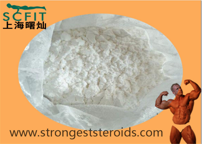White Powder Cutting Cycle Steroids Estradiol Enantate 4956-37-0 Estrogen With Safe Delivery