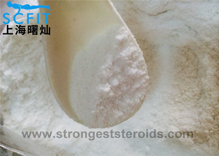 Testosterone Phenylpropionate CAS1255-49-8 Steriod Raw Powder For Building